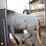 probleemloos trailer laden