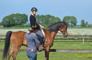 paard en ruitercoaching